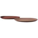 Ranger Platters Earth Set/2